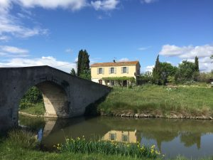 eating out in languedoc - le chat qui peche