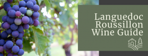 Languedoc Roussillon Wine Guide