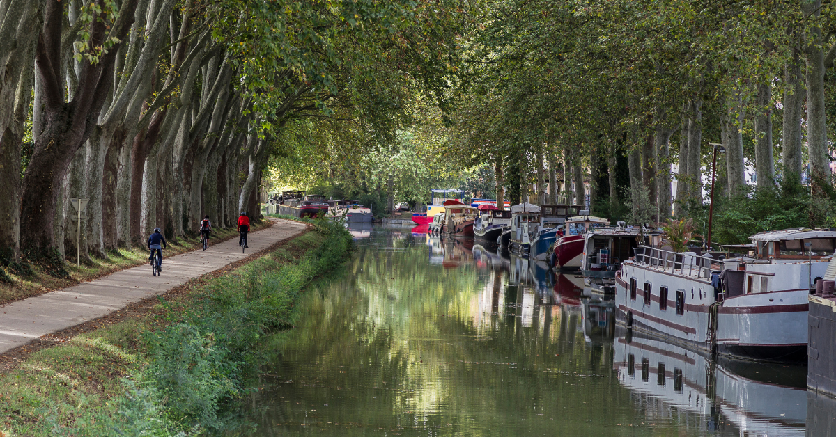 Cycling along Canal du Midi