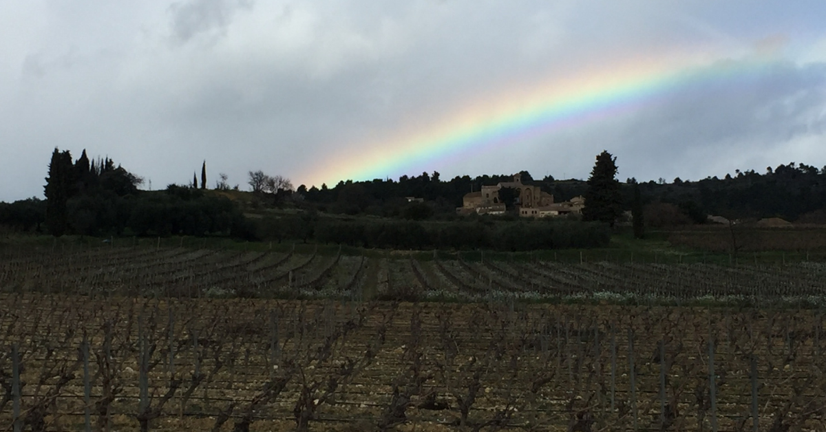 special offers in languedoc - Winter