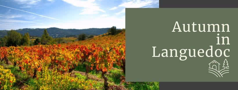 Autumn in Languedoc